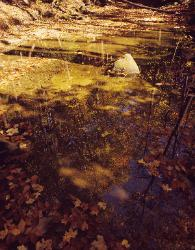 Water, rock and reflections of autumn leaves