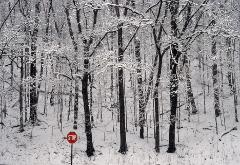 Fresh heavy snowfall forest with bright red stopsign in foreground