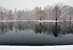 photograph of a winter snowy pond with tres reflected in the still water, snow streaks falling