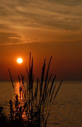 Photo of beautiful sunset over Lake Erie with shilouoette of grasses in foreground.