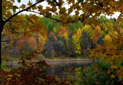 photograph of Sylvan Pond in the Cuyahoga Valley National Park with brilliant fall autumn colored trees