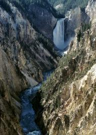 photograph of Yellowstone National Park and the lower falls