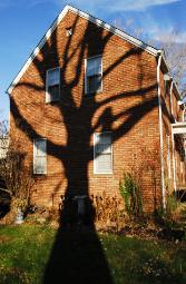 Red brick home wiith huge bare tree shadow on it