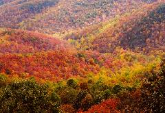 Beautiful fall colored mountains in western Pennsylvania